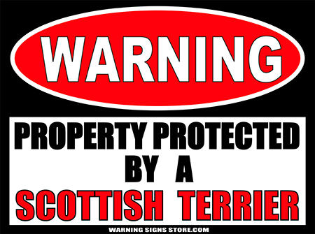SCOTTISH TERRIER  PROPERTY PROTECTED BY WARNING SIGN