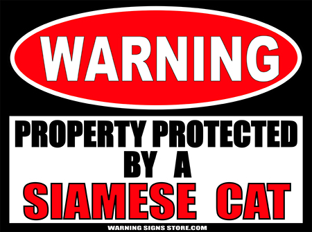 SIAMESE  CAT   PROPERTY PROTECTED BY WARNING SIGN